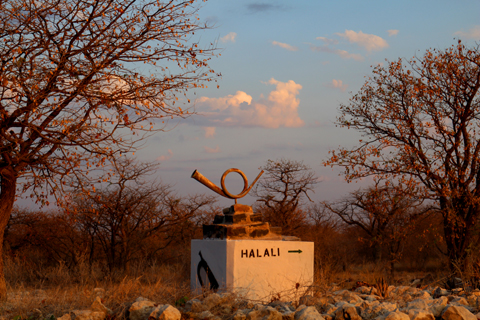 Halali camp is a popular midway stop between Okaukuejo and Namutoni